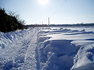 neige 1