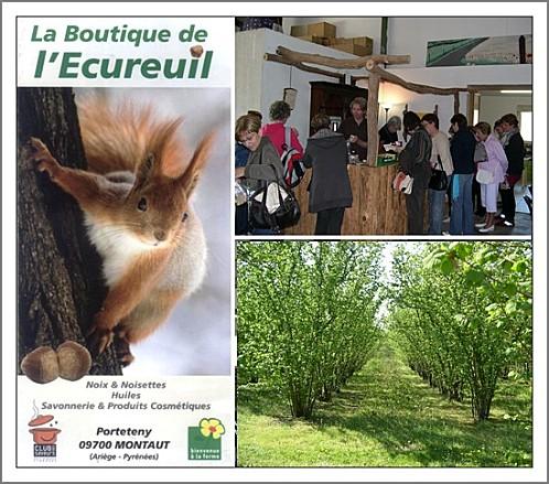 01-boutique-ecureuil