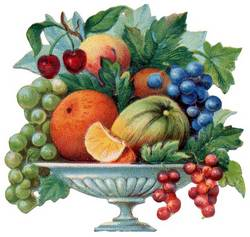 240810-fruits