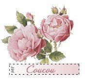 bouquet-rose