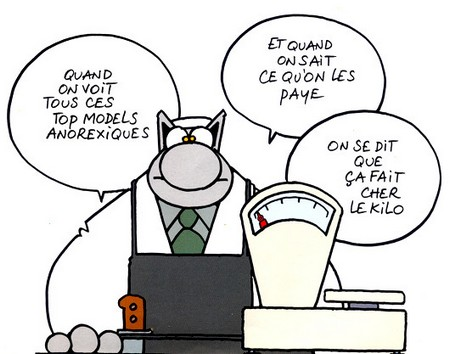 le-chat-top-modele.jpg