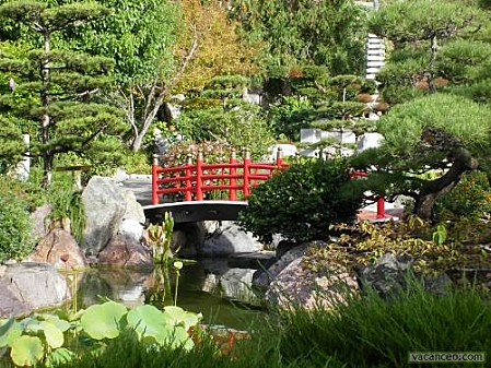 Jardin-japonais.jpg