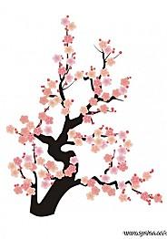 fleur-japon.jpg