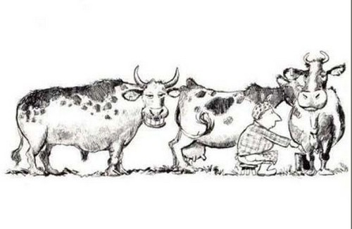 Humour-agricole.jpg
