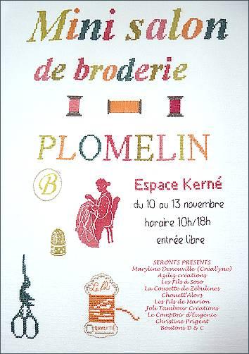201111-plomelin