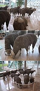 Moutons téléphoniques