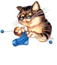 Chat-tricoteur.jpg
