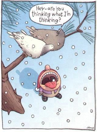humour-bonne-annee--.jpg