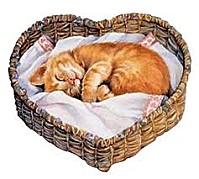 chat-coeur