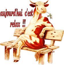 Vache-relax.jpg