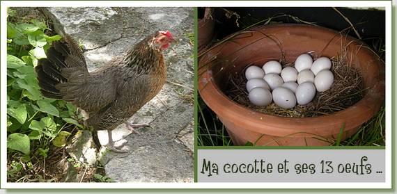 20120611-cocotte-et-ses-cocos