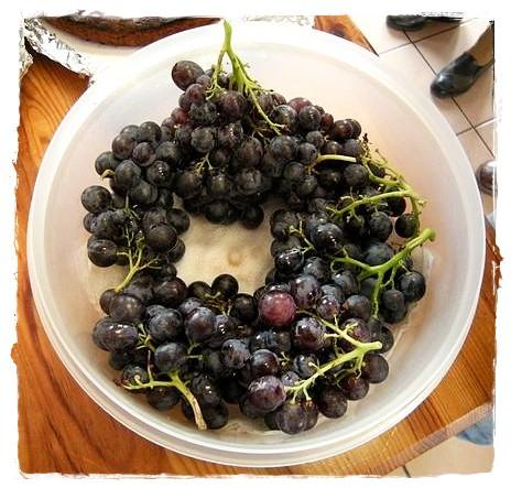 20120926-martine-raisins