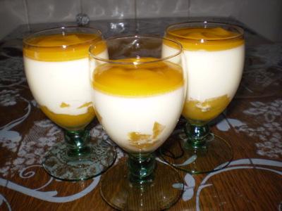 Panna-cotta-coco-mangue-copie-1.jpg