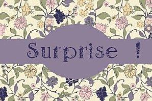 fleuri-violet-surprise