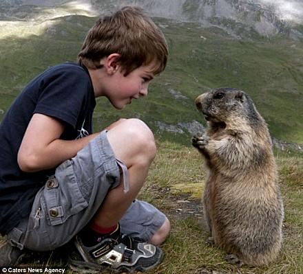 L-enfant-et-les-marmottes-2.jpg