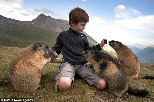 L-enfant-et-les-marmottes-3.jpg