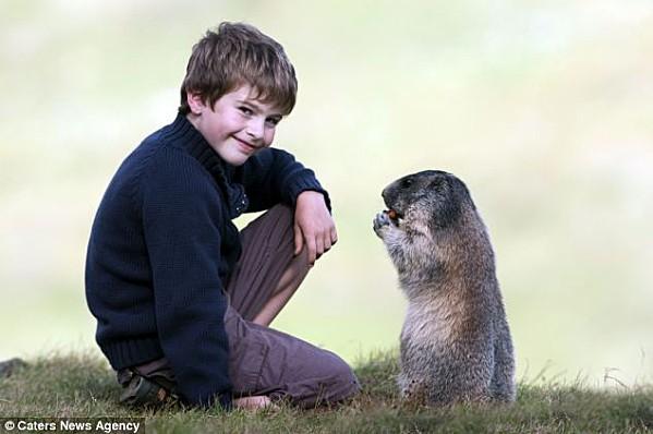 L-enfant-et-les-marmottes-5.jpg