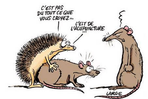 Humour-dessin-acupun.png